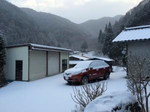 先日は牡丹雪。今日は粉雪。今日も明日も晴れなので、また融けそうですが。
