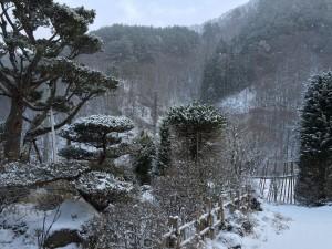お借りしているお家は、以前とは正反対の純和風。雪がお似合いです。人間は和洋折衷?です。
