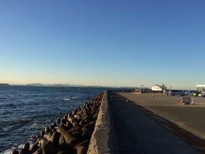 ここから16時のバスに乗って大会会場の安房小湊に向かいますが、思わず海に見惚れました。