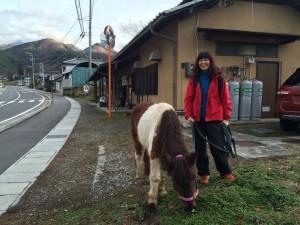 カフェまで往復で2.5キロ。コレオスだと3分。馬だと15分。ただし、草を途中であげるので、20分くらいだったかな。