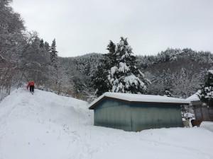 疲れる前に山羊小屋の横の斜面でスノボ〜〜。